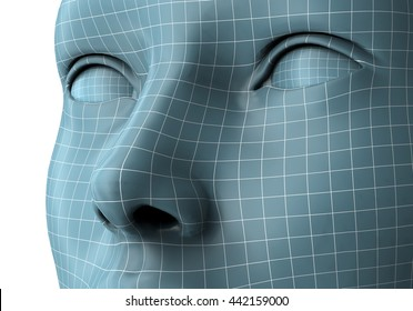 woman face in wireframe lines isolated on white, 3D illustration