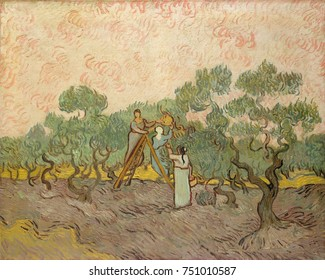 Women Picking Olives, by Vincent Van Gogh, 1889, Dutch Post-Impressionist, oil on canvas. Of the three versions made of this motif, this last one, is most stylized