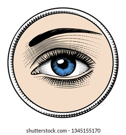 Women's luxurious eyes with perfect eyebrowes and full lashes. Vintage engraving stylized drawing.