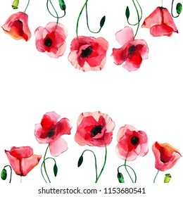 Wonderful lovely bright summer autumn herbal floral red poppies flowers with green leaves frame watercolor hand illustration. Perfect for greetings card, textile, wallpapers, banners
