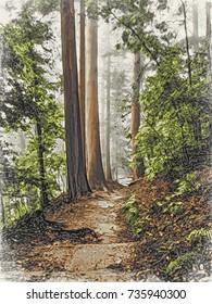 Woodblock Printing; Trail at the World Heritage Forest Kumano Kodo, Wakayama Prefecture, Japan, May, 2012