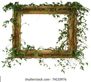 wooden frame was overgrown with ivy. isolated on white. with clipping path.
