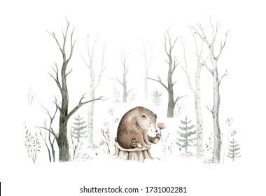 Woodland watercolor cute animals baby bear. Scandinavian owls on forest nursery poster design. Isolated charecter.