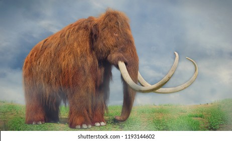 woolly mammoth, prehistoric mammal in foggy landscape (3d illustration)