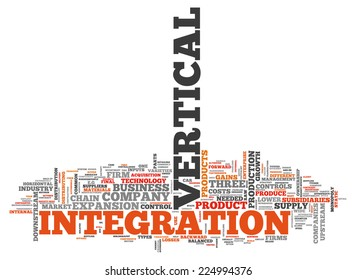 Word Cloud with Vertical Integration related tags