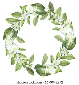 Wreath of hand drawn blooming lemon tree branches, isolated illustration on a white background