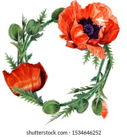 wreath of poppies and green leaves painted with watercolor for greeting cards (real flowers)