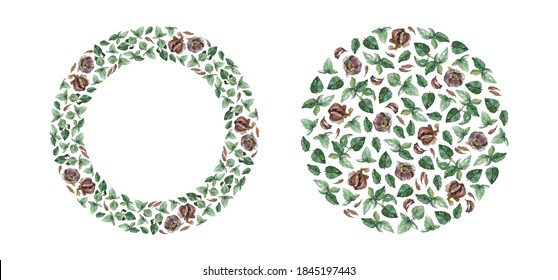 Wreath and round pattern of green basil and garlic, isolated on white. Watercolor illustration. For cards, invitations, menu, recipe, cookbook and packaging design.