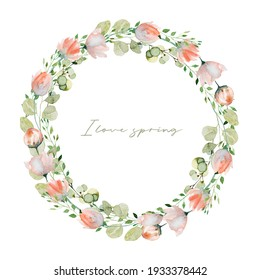 Wreath of watercolor spring plants: pink tender wildflowers, greenery and eucalyptus branches; hand painted isolated illustrations on a white background