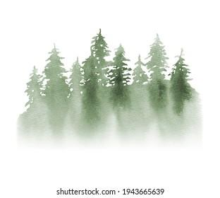 WWatercolor Forest tree illustration. Green landscape.