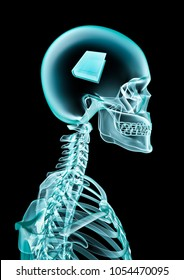 X-ray book lover / 3D illustration of human skeleton x-ray showing thick book inside head