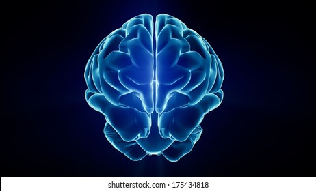 Xray Brain isolated on black background
