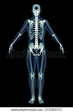 Royalty Free Stock Illustration of Xray Human Body Man Skeleton ...