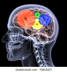 X-Ray of a male skeleton with a series of colored gears in his head, seen through his brain, for the concept of thought. Isolated on a black background