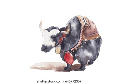 Yak. Watercolor painting isolated on white background.