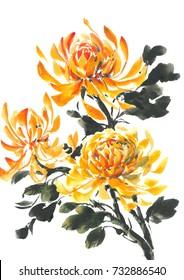Yellow chrysanthemum. Bright flowering Chrysanthemum. Watercolor background.