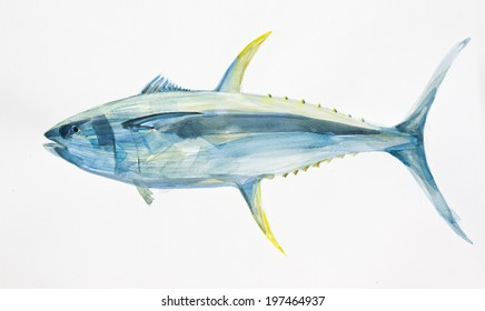 yellow fin ocean tuna fish hand drawn with watercolors