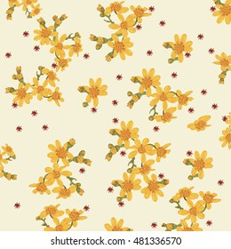 Yellow flowers. Australian yellow rounded petals scattered on pale yellow background. Groundsel flowers with green leaves and buds with red gum nuts.