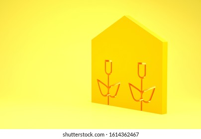 Yellow Home greenhouse and plants icon isolated on yellow background. Minimalism concept. 3d illustration 3D render