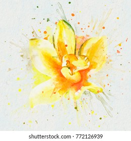 The yellow Orchid. Watercolor illustration on white background, with splashes of paint. The collection of fragrances