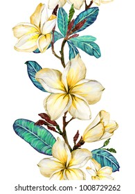 Yellow plumeria flower on a twig. Border illustration. Seamless floral pattern. Isolated on white background.  Watercolor painting. Hand drawn.