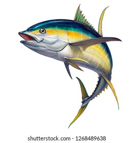 yellow tuna. black fin yellow tuna on white. Realistic isolated illustration.