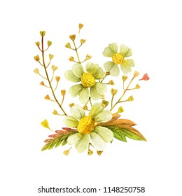 Yellow wild plants boutonniere for art decoration. Watercolor bouquet on a white backdrop,  isolated, path included