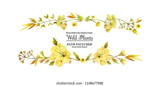 Yellow wild plants for header. Watercolor banner on a white backdrop,  isolated, path included