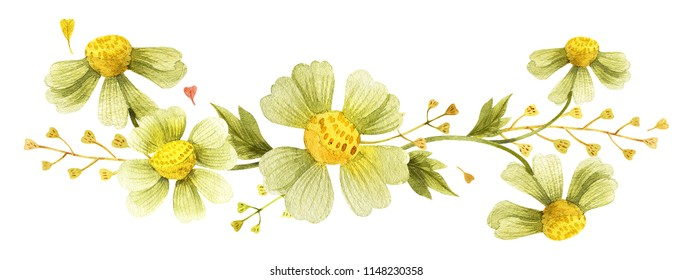 Yellow wild plants vignette for decoration. Watercolor wreath on a white backdrop,  isolated, path included