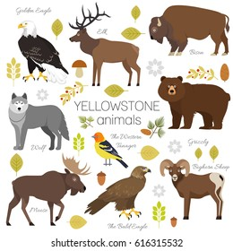 Yellowstone National Park animals set grizzly, moose, elk, bear, wolf, golden eagle, bison, bighorn sheep, bald eagle, western tanager, isolated on transparent background  illustration.