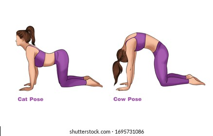 cow pose images stock photos  vectors  shutterstock