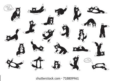 yoga fitness cats funny doodle cartoon illustrations set