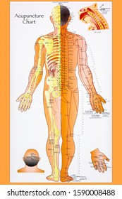 York.England.06.08.13. Acupuncture - a system of complementary medicine that involves pricking the skin with needles. Used to alleviate pain and treat various physical, mental and emotional conditions