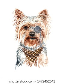 Yorkshire Terrier dog. Portrait of a dog. Watercolor hand drawn illustration.Watercolor  Yorkshire Terrier with Monocle and Chess scarf layer path, clipping path isolated on white background.