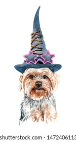 Yorkshire Terrier dog.Watercolor hand drawn illustration.Watercolor  Yorkshire Terrier with witch hat  and star shape sunglasses layer path, clipping path isolated on white background.
