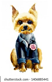 Yorkshire terrier. Watercolor hand drawn illustration