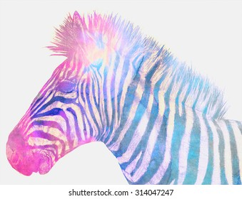 Zebra art, pencil drawing superimposed with watercolor texture images. Digital blend, colorful artistic image. Suitable for print or digital media.