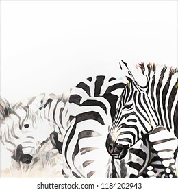 Zebra herd in the Masai Mara. Digital painting in black and white with bright accents and space for text