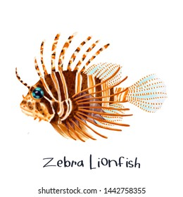 Zebra Lionfish Fish Realistic Illustration