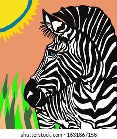 Zebra under the Serengeti sun