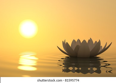 Zen flower lotus into the water with sunset on background