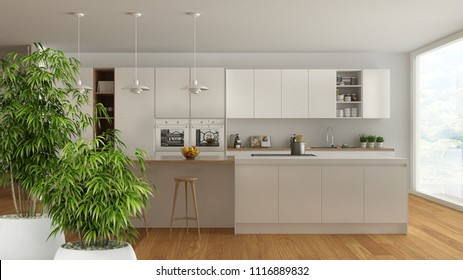 Zen interior with potted bamboo plant, natural interior design concept, scandinavian white kitchen with wooden and white details, minimalist architecture, 3d illustration