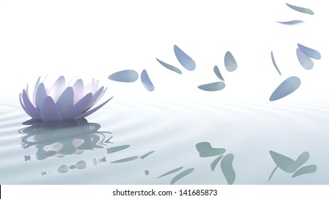 Zen loto flower in water with purple and pink petals moved by wind on white background