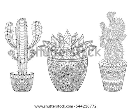 Zentangle Cactus Set Illustration Hand Drawn Stockillustration