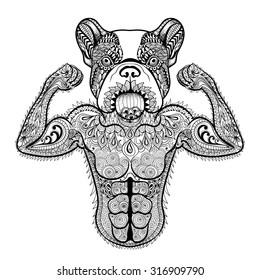 Zentangle stylized strong French Bulldog like bodybuilder. Hand Drawn sport illustration isolated on white background. Vintage sketch for tattoo design or makhenda. Animal art collection.