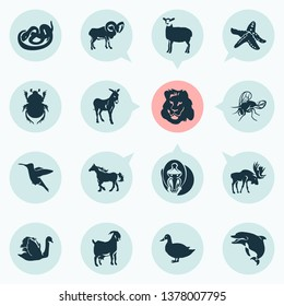 Zoo icons set with lion, donkey, swan and other colibri elements. Isolated  illustration zoo icons.