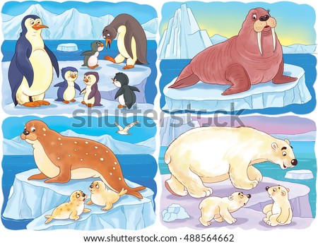 zoo small set cute arctic animals stock illustration 488564662