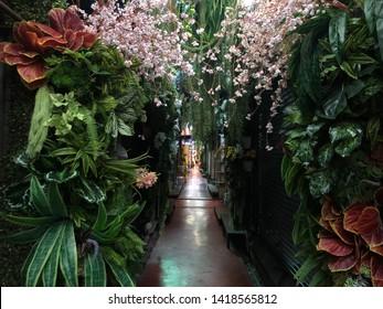 01 June 2019; Bangkok Thailand: Flowers decoration shop at Chatuchak Jatujak JJ Weekend Market, The largest market in the world.