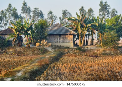 01/22/2014, West Bengal : A village house in winter morning, near Sundarbans delta, West Bengal.