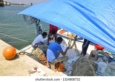 05/28/2014- Agva, Istanbul, Turkey. Fishermen arranging the fish they caught in the boat.